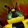 Waspinator- Beast Wars